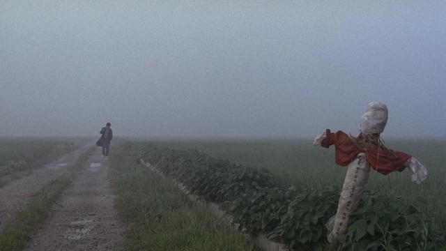 Memories of Murder (Bong Joon-ho, 2003)